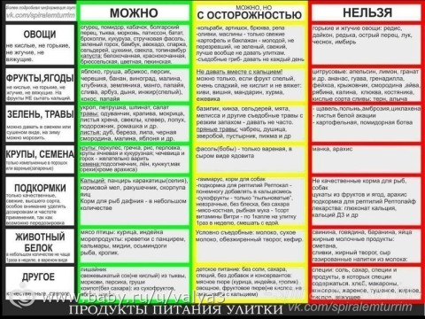 таблица продуктов питания для похудения