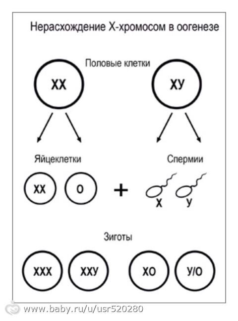 paren-uchitsya-trahatsya-s-prostitutkoy