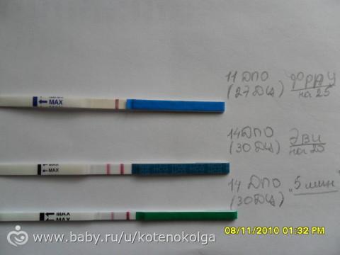 2 недели беременности пошли месячные