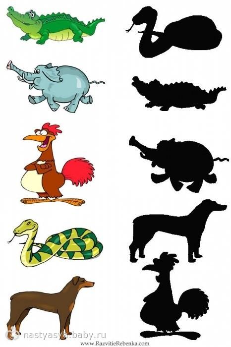 Рисунки животных с тенями