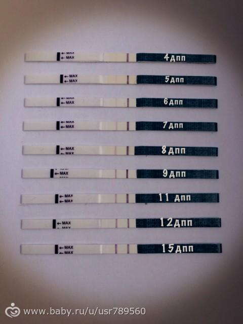 Эко когда делать тест на беременность
