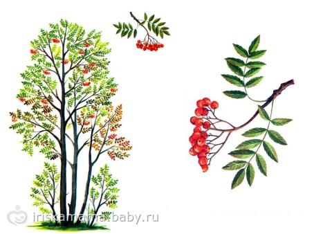 Детский рисунок на тему осень зима весна лето смотреть