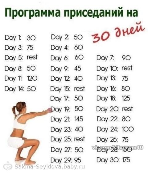 программа приседаний для похудения