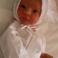 Ранняя диагностика беременности — анализ на ХГЧ