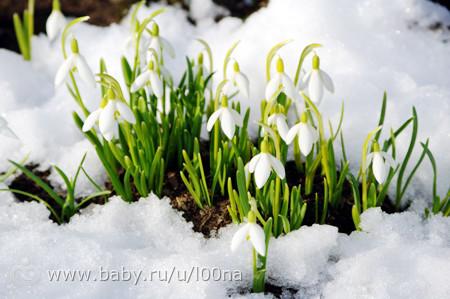 Картинки природы в марте
