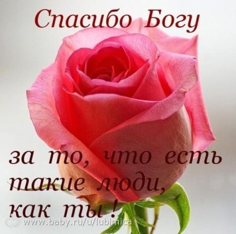 0d35f7da6b44 Лилия спасибо тебе)))))))))