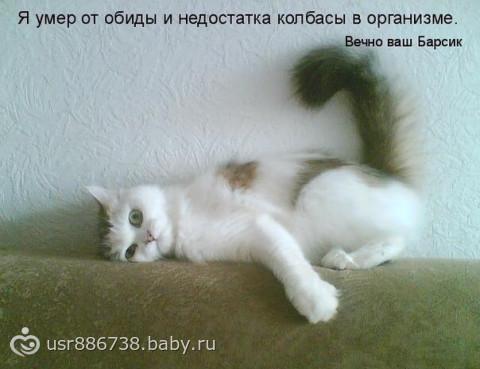 image1400977366.291720